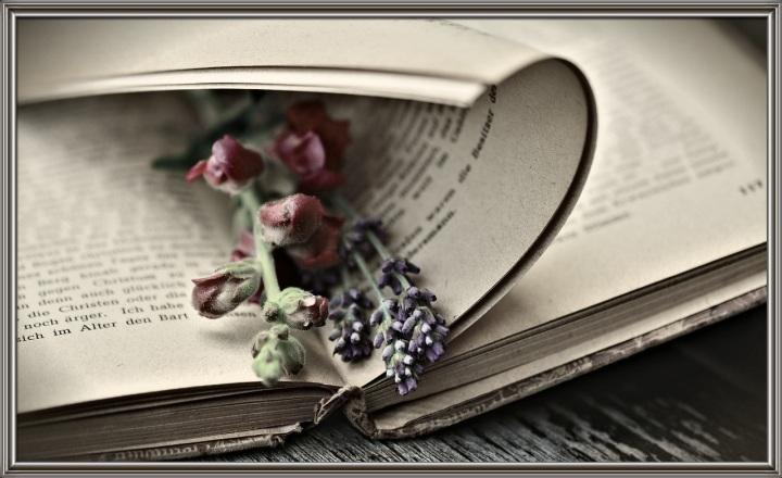 come un libro aperto...